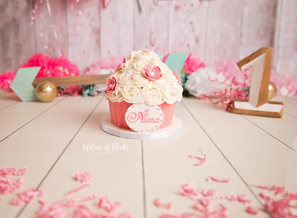 Houston, TX Cake Smash pictures - Lifetime of Clicks Photography