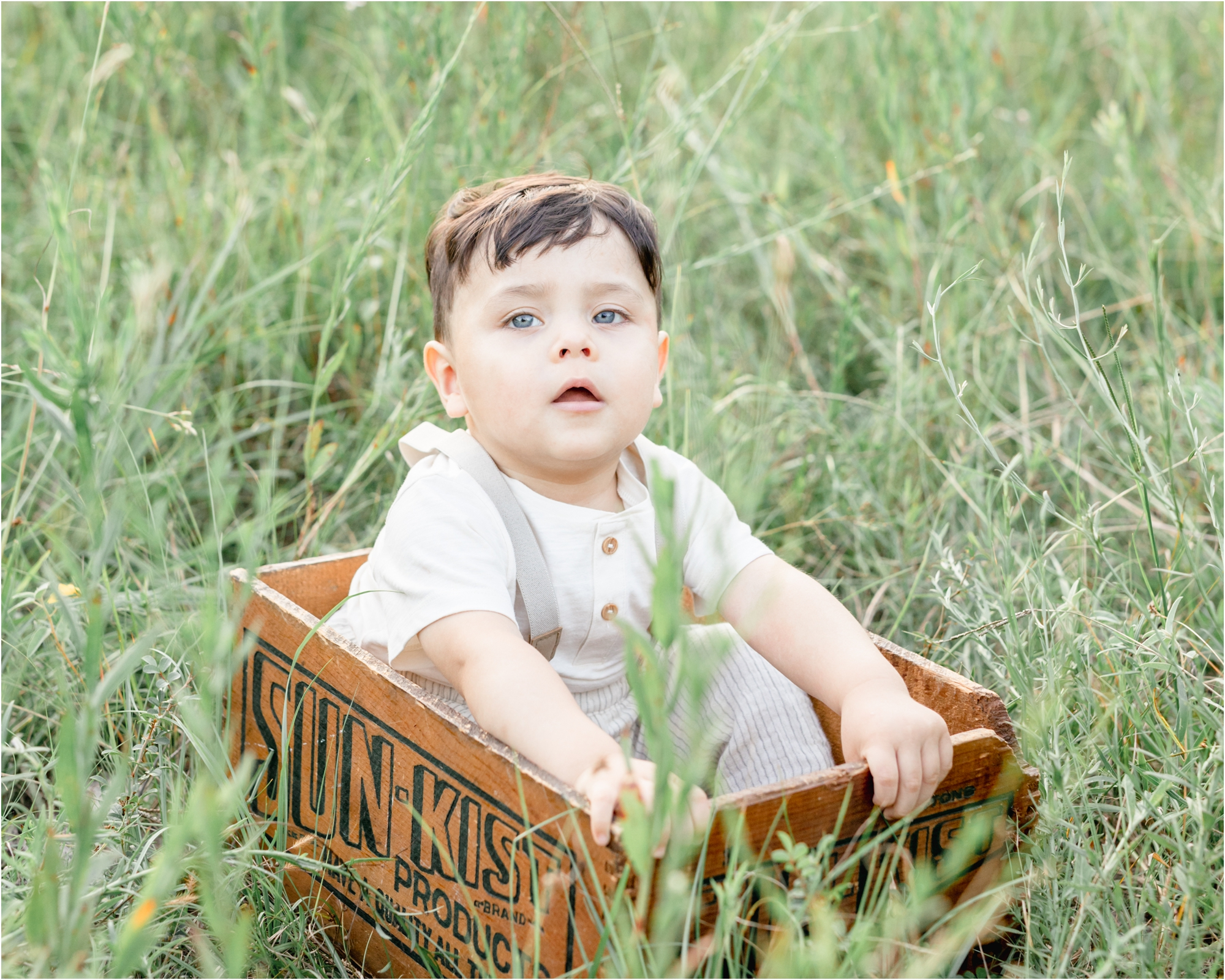 Toddler sitting in wood crate among the tall grass. Photo by Lifetime of Clicks Photography.